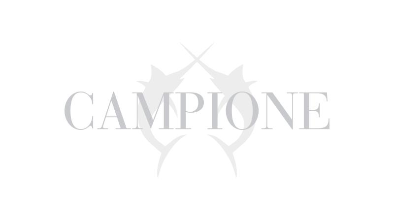 brandslider-campione